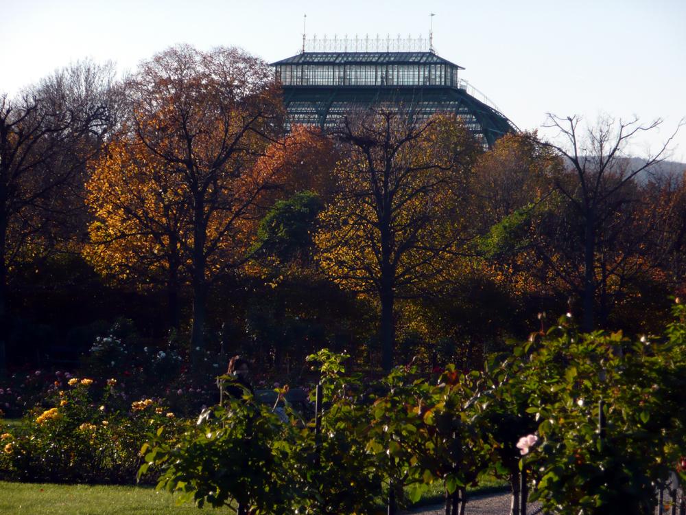Katja Schmitt Vienna Wien Autumn Herbst Botanical Garden Schoenbrunn
