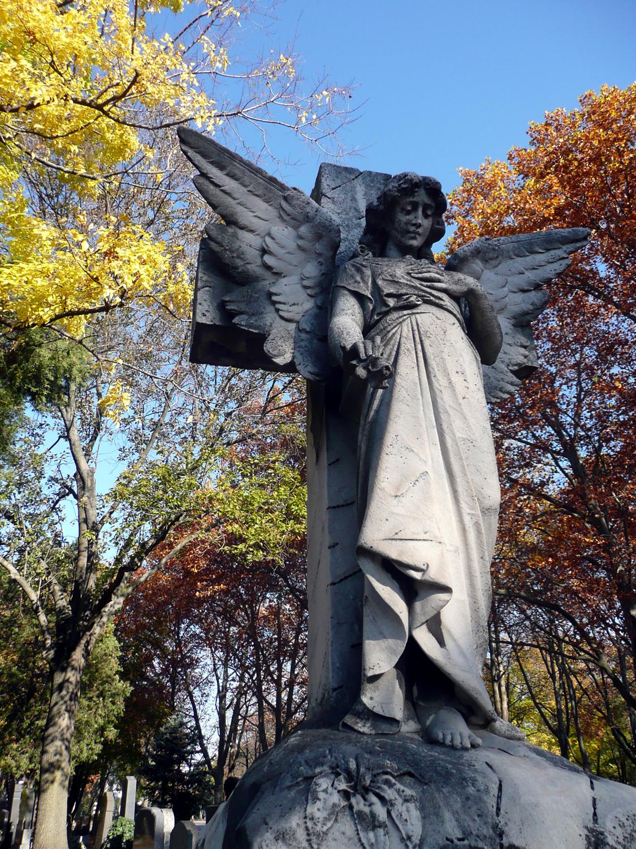 Katja Schmitt Vienna Wien Autumn Herbst Sight Zentralfriedhof 2