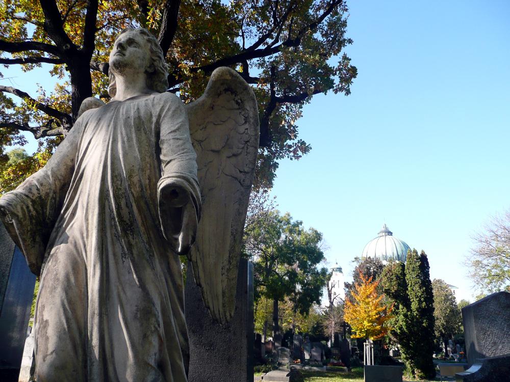 Katja Schmitt Vienna Wien Autumn Herbst Sight Zentralfriedhof 4