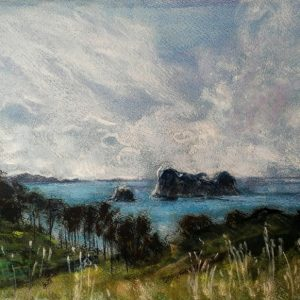 Katja Schmitt New Zealand Hahei Cathedral Cove Pastel Painting