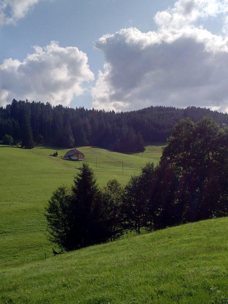 Katja Schmitt Schwarzwald Black Forest